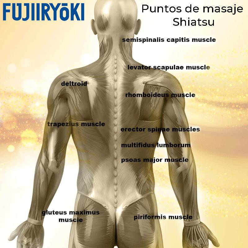 Puntos de masaje Shiatsu